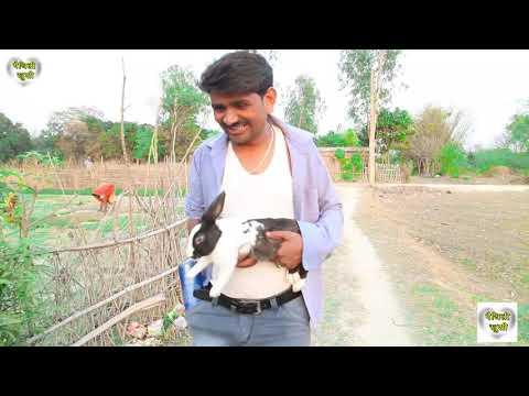 रामलाल के दारुमै जीनदगी || RAMLAL || FULMATIYA ||  MAITHILI COMEDY || MAITHILI KHUSHI