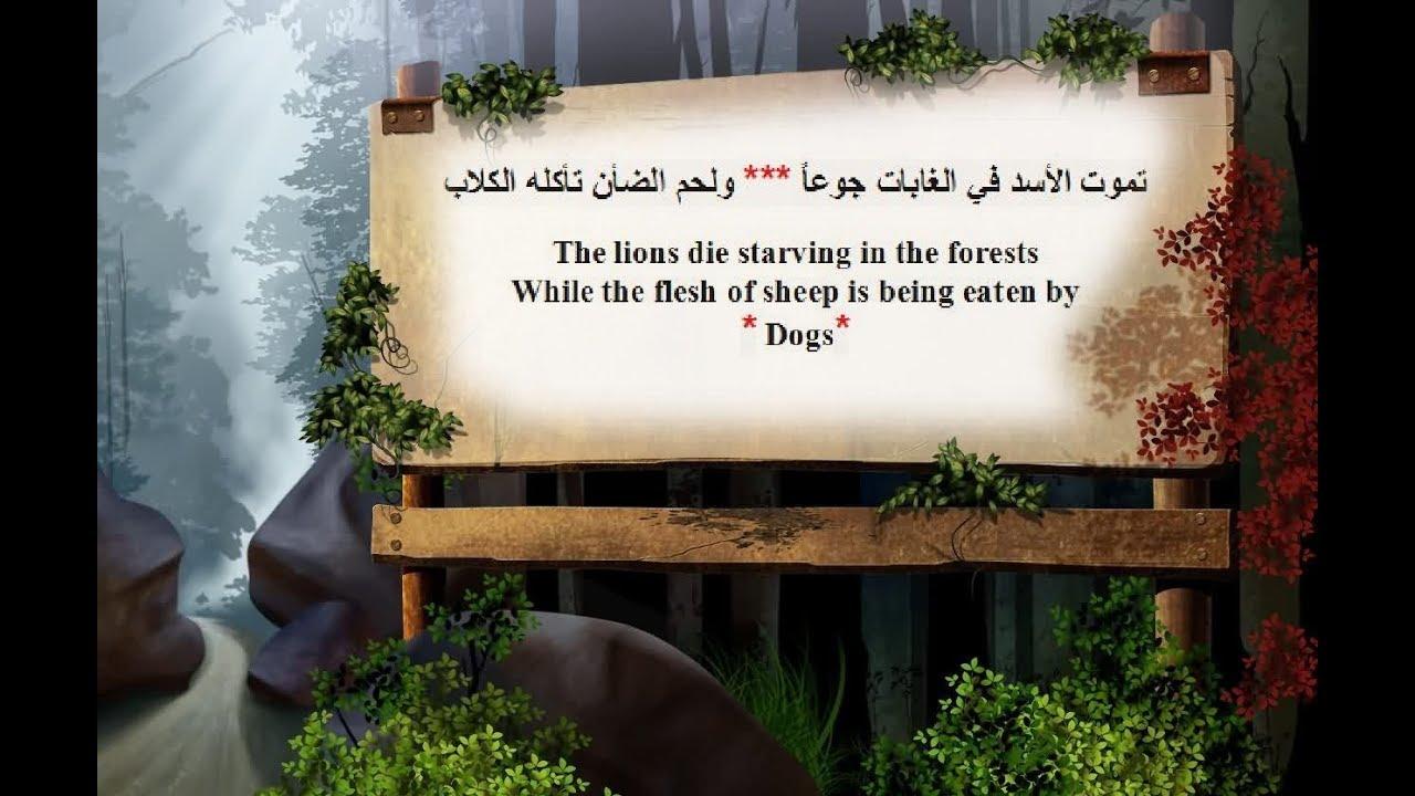 Arabic Poem In English أشعار عربية مترجمة الى الانجليزية Youtube