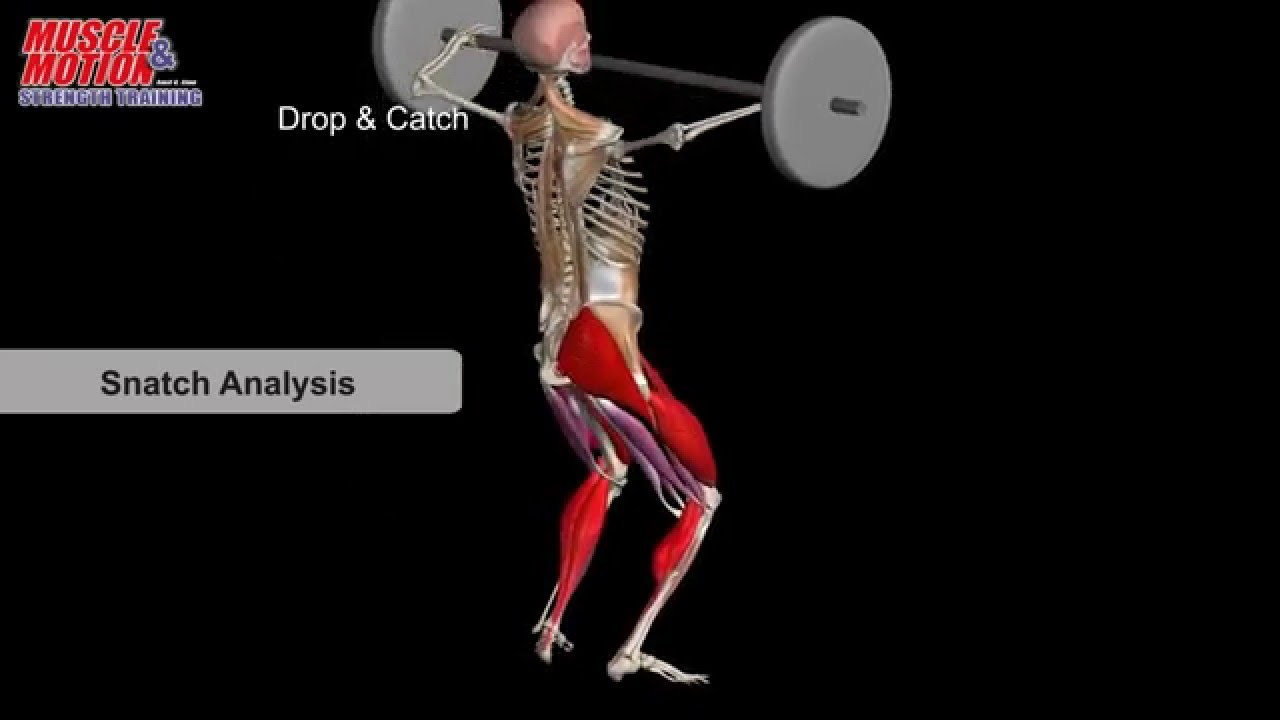 Snatch Anatomy - YouTube