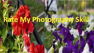 My Photography Skills / My Passion / Sumer Sam Vlogs / #shorts