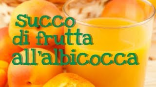 SUCCO DI FRUTTA ALL'ALBICOCCA FATTO IN CASA DA BENEDETTA - Natural Homemade Apricot Juice -