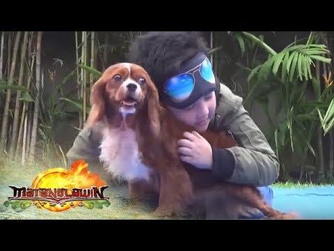 Matanglawin: Matanglawin Playtime with Alonzo