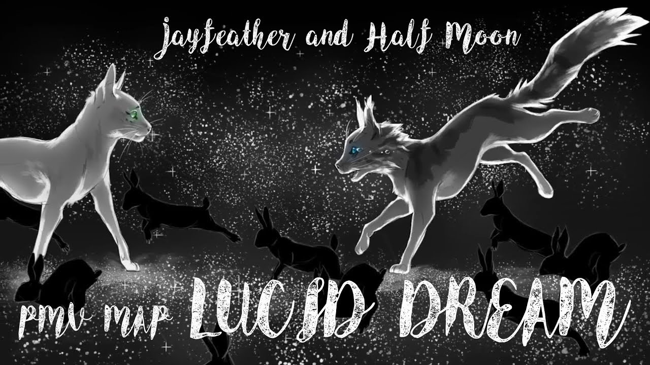 Lucid Dream   Jayfeather 24 Hour PMV MAP Complete