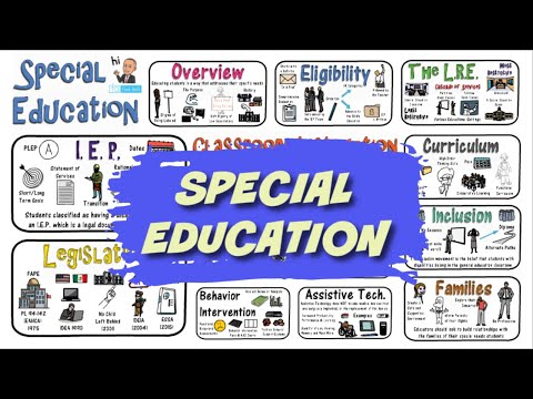Special Education: Everything You Need to Know