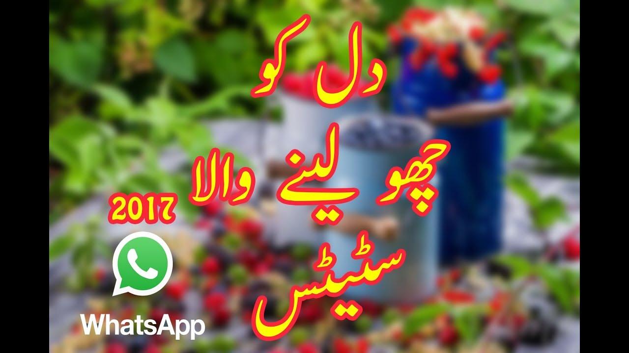 New Whatsapp Status Naat 30 Sec Video Clips New Naat 2017 New Pakistan Islamic Status Alfaisal Art