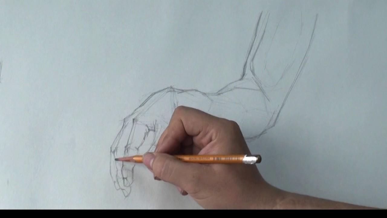 Cách vẽ vẽ cánh tay bằng bút chì