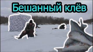 Бешеный клев Зимняя рыбалка на р.Иня