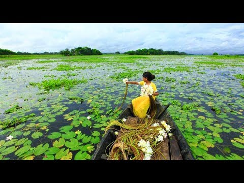 Beautiful Bangladesh (Land Of Rivers) 1080p