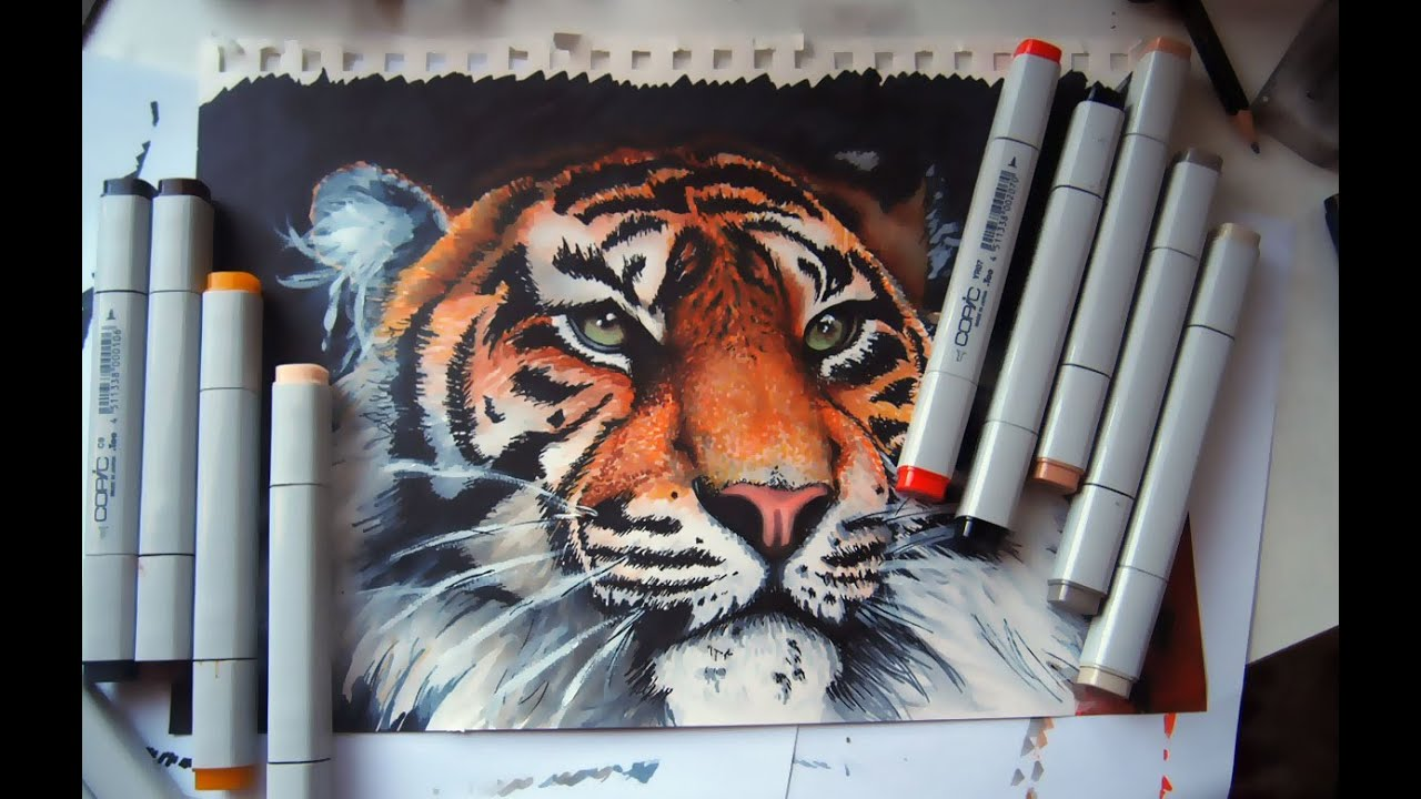 Tiger - copic markers time lapse - YouTube Copic Markers Drawing