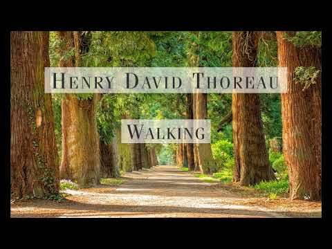 thoreau walking summary