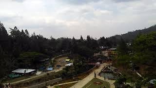 Wisata Jambe kembar Flowering Hill