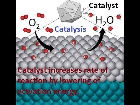 catalysis in hindi