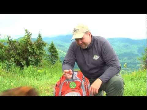 Hiking With Dogs, Part Two -- Training
