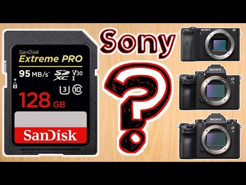 Best Memory Card For Sony Cameras – Choosing The Best SD Card For Video On Sony Alpha Cameras