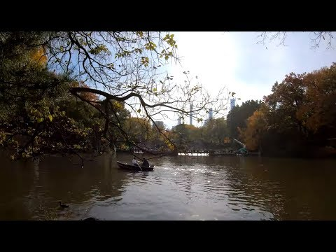 ⁴ᴷ⁶⁰ Walking NYC : Central Park during Autumn / Fall from 59th - 110th Streets