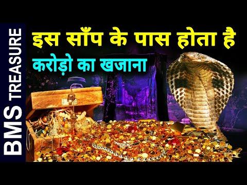 Python snake ||  करोडो रूपये का खजाना होता है इस सांप के पास जानकर हैरान रह जाओगे आप | BMS TREASURE