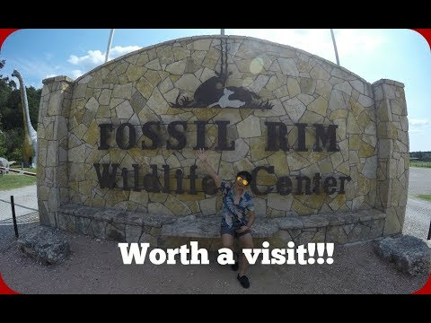 Fossil Rim (Worth a visit!!!) DAY 1 | Travel Vlog || 1tsmezeus