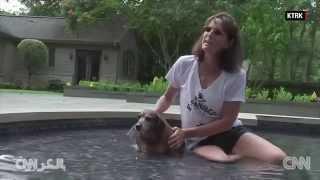 حمية غذائية وبرنامج رياضي لكلب يعاني وزناً زائداً