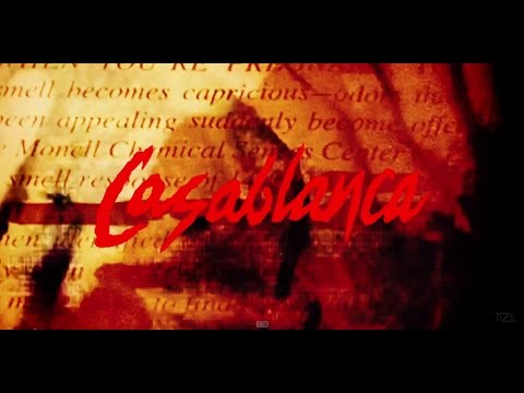 Casablanca - My Shadow Out Of Time (Official lyric video)
