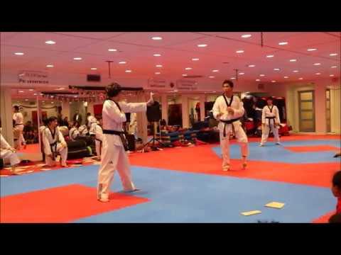 2019 Han's Taekwondo Christmas Demo