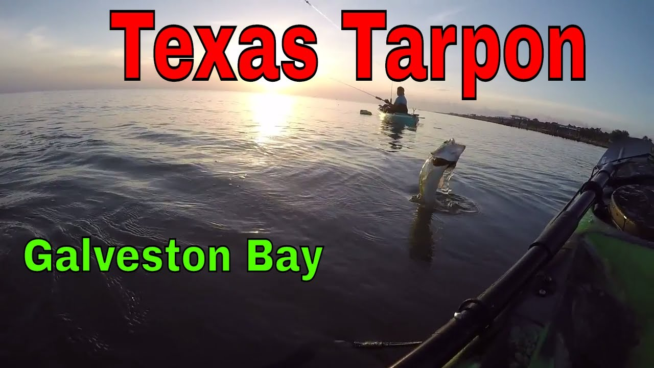 Galveston bay kayak fishing youtube for Good fishing spots in galveston