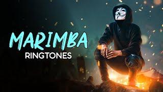 Download Top 5 Best Marimba Ringtones 2019 | Ft.Taki Taki, Señorita, Bad Guy, Loco Contigo | Download Now Mp3 and Videos
