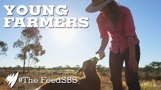 Young farmers I The Feed