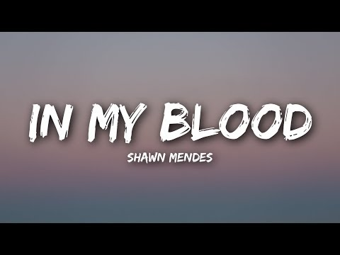 Shawn Mendes - In My Blood (Lyrics / Lyrics Video)