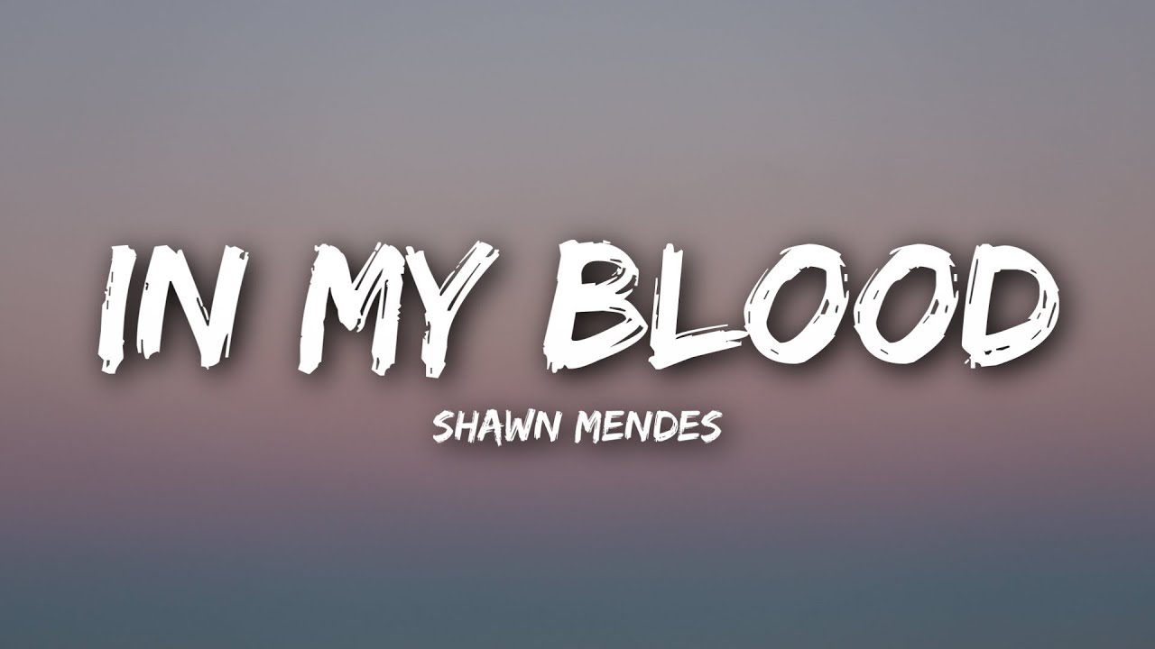 Shawn Mendes In My Blood Lyrics Lyrics Video Youtube