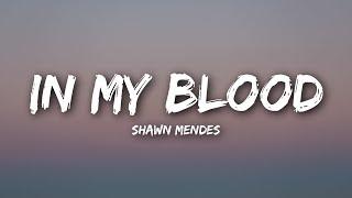 Video Shawn Mendes - In My Blood (Lyrics / Lyrics Video) download MP3, 3GP, MP4, WEBM, AVI, FLV Agustus 2018