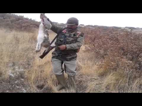 Охота на кролика - Hunting Rabbit 2014 без регистрации и смс
