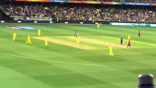 ICC Cricket World Cup 2015 amazing catch by Steve smith