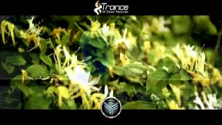 ▶ Michael Flint - Come Together (Original Mix) [Trance All-Stars Records] •PROMO•
