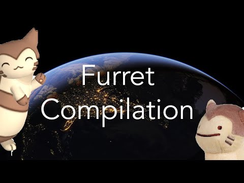 FURRET VIDEO COMPILATION