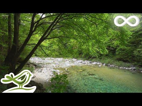 "Beautiful Relaxing Music: ""Warm Light"" By Peder B. Helland (Official Video)"