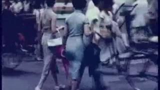 Hong Kong's Past 白光 - 桃李爭春