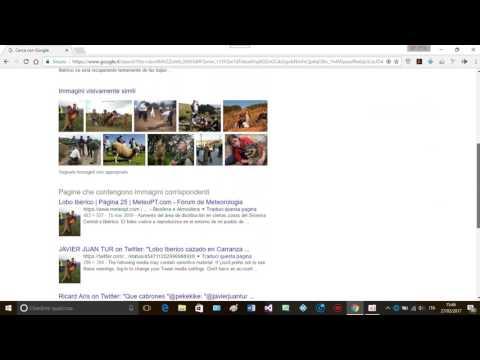 ricerca per immagini versione corta