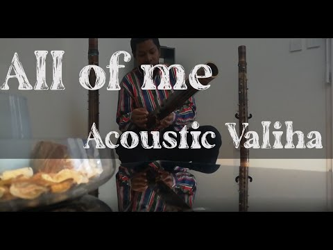 All of me  - John Legend  - Acoustic Valiha by Rado Fentsu
