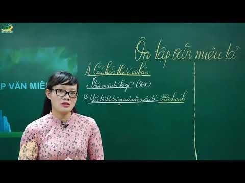 Ngữ Văn Lớp 6 –Bài Giảng Ôn Tập Văn Miêu Tả Ngữ Văn 6|Rèn Kĩ Năng Làm Văn Miêu Tả|Cô Lê Hạnh