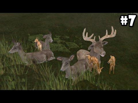 Wild Animals Online - Group of Deers - Android/iOS - Gameplay Episode 7