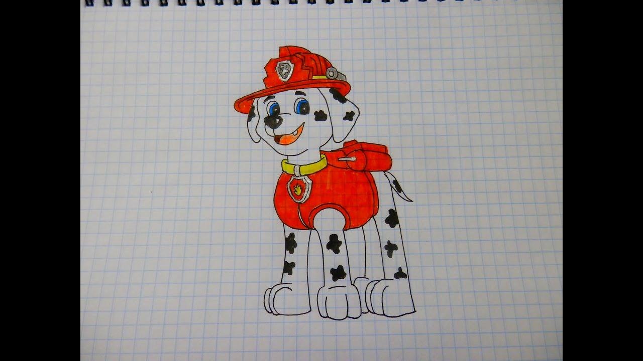 Нарисовать маршала из щенячьего патруля поэтапно