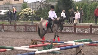 «Вятка Московии - 2013»- Региональная выставка лошадей в ЧКСК  «Лаир»