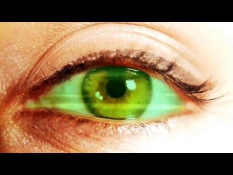 Biometric Iris Recognition