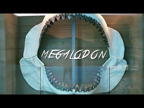 🇵🇦 MEGALODON & BIOMUSEO - PANAMA CITY - PANAMA #32 - 2016 - Vlog, Reportaje, Turismo