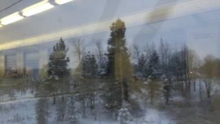 Кузьминский мост из окна электрички