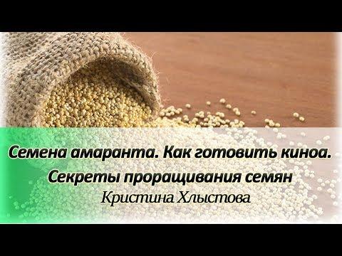 семена амаранта как готовить