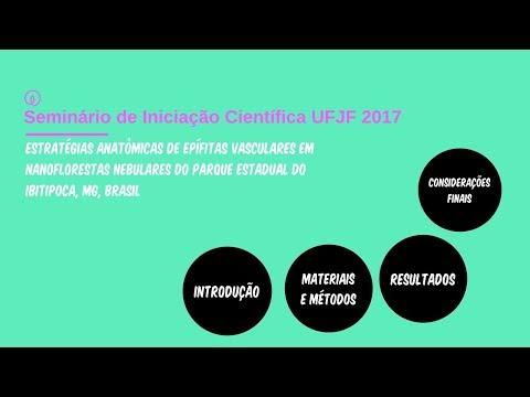 """UFJF/SEMIC 2017 - """"Estratégias anatômicas em epífitas"""""""