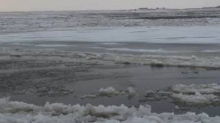 Лёдостав в Хабаровске 14 11 2017