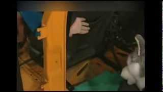 Перевозка домашних животных в автомобиле - краш-тесты