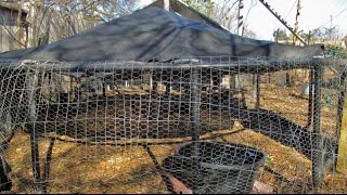 Easy DIY Chicken Coop/Chicken Tractor Design Using Free & Recycled Materials